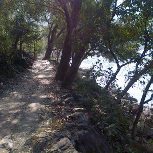 Les trois chemins du Tarot