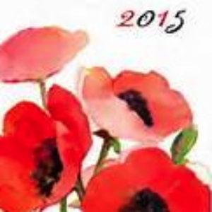 cette année 2015 : que nous en dit le Tarot ?