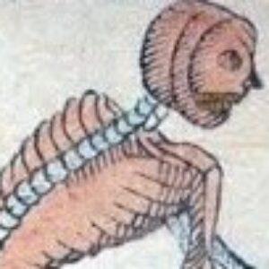 Le Tarot de Morine